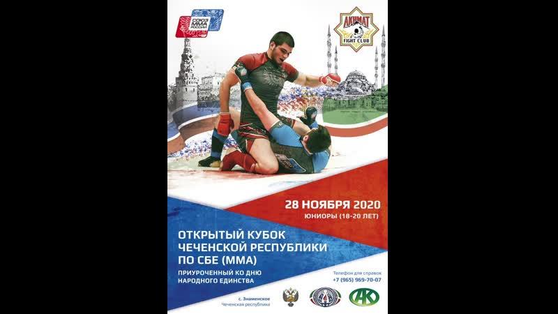 Открытый кубок Чеченской Республики по ММА среди юниоров Начало 29 ноября 14 00