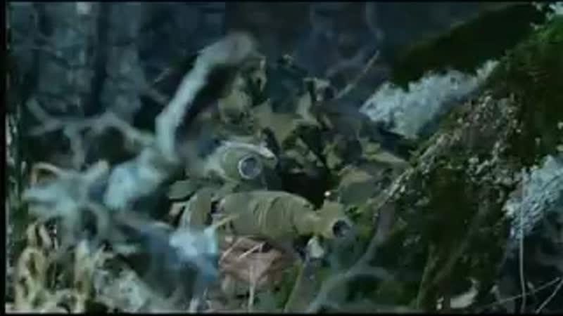 Грозовые ворота Операция по уничтожению боевиков 240p mp4