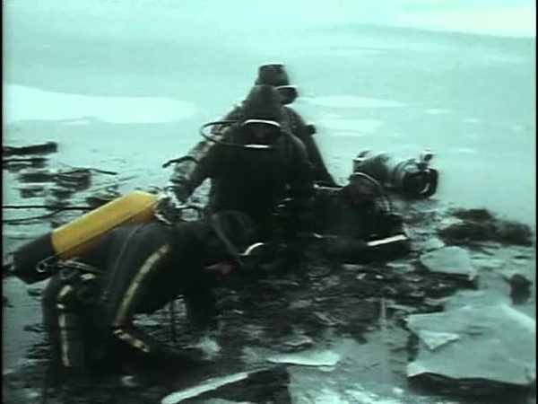 35 1992 Дунай II Мечта Карла Великого Подводная одиссея команды Кусто