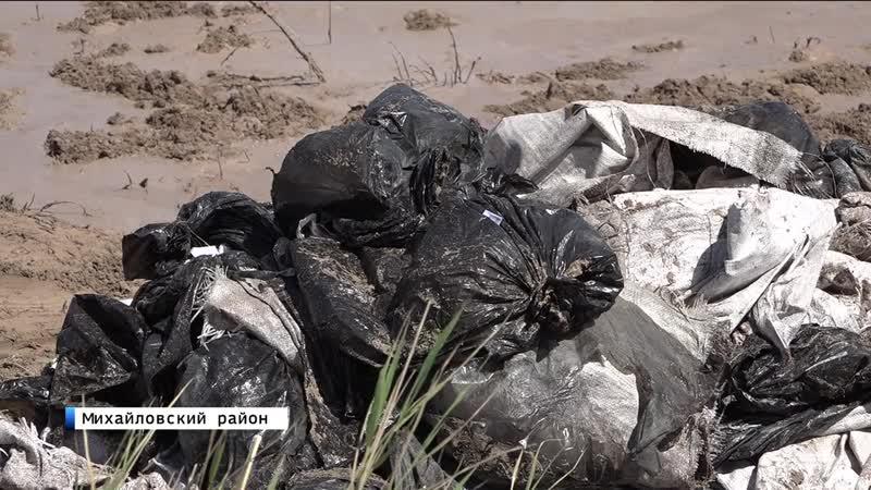10,5 тонн цист артемии, добытых браконьерами, вернули в Малиновое озеро