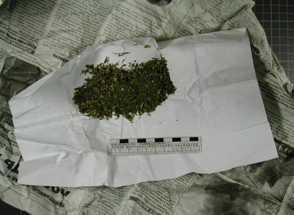 Сколько грамм марихуаны можно носить собой конопля афганка семена купить
