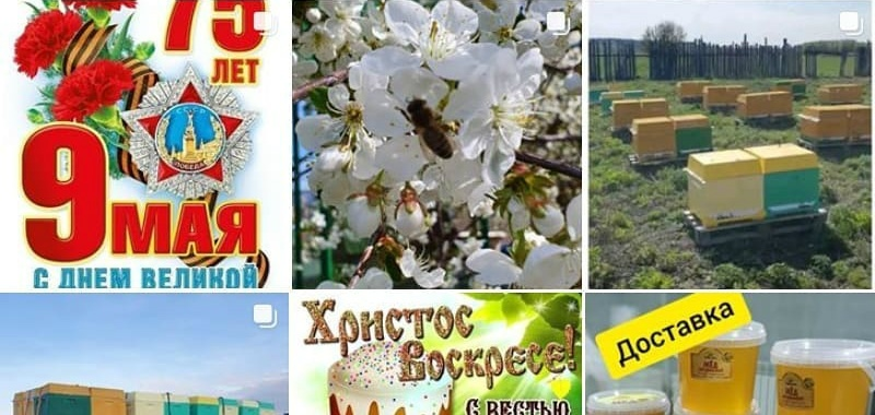 Предприятия пищевой перерабатывающей промышленности области, в том числе и из Петровска, реализуют свою продукцию через интернет