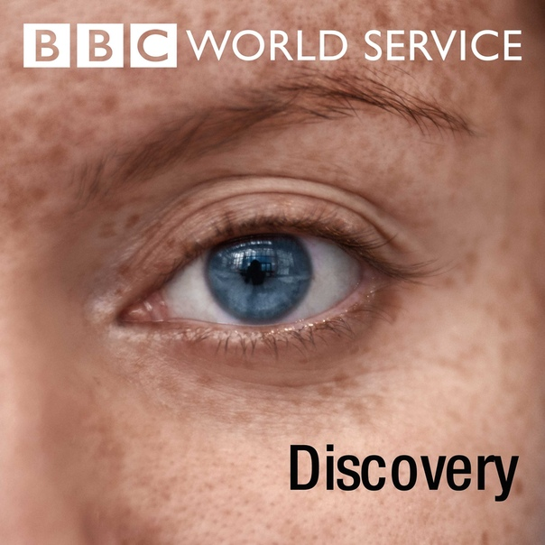 BBC NEWS: WORLD SERVICE: DISCOVERY