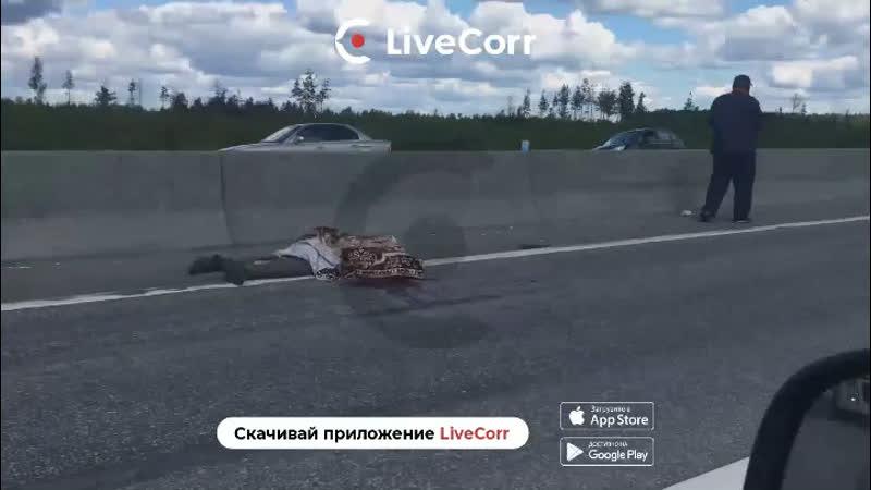 Рабочего сбили на дороге в Нижегородской области