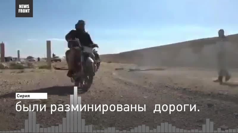 Блохин об итогах поисковой операции в сирийской пустыне