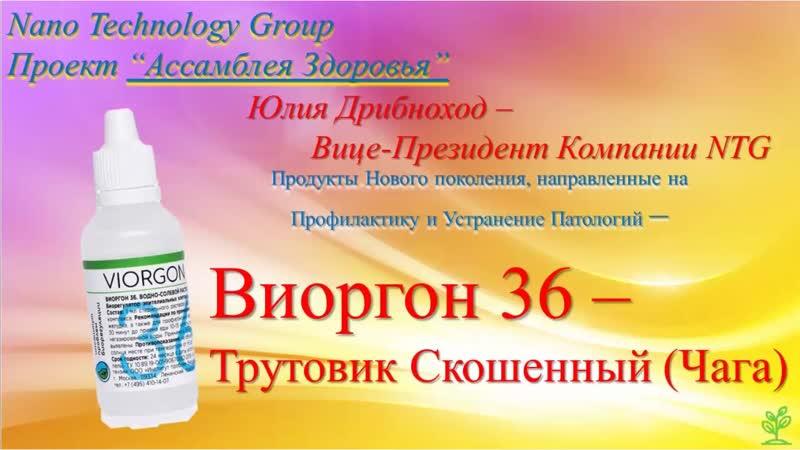 Продукция NTG - Виоргон 36 Трутовик Скошенный (Чага)