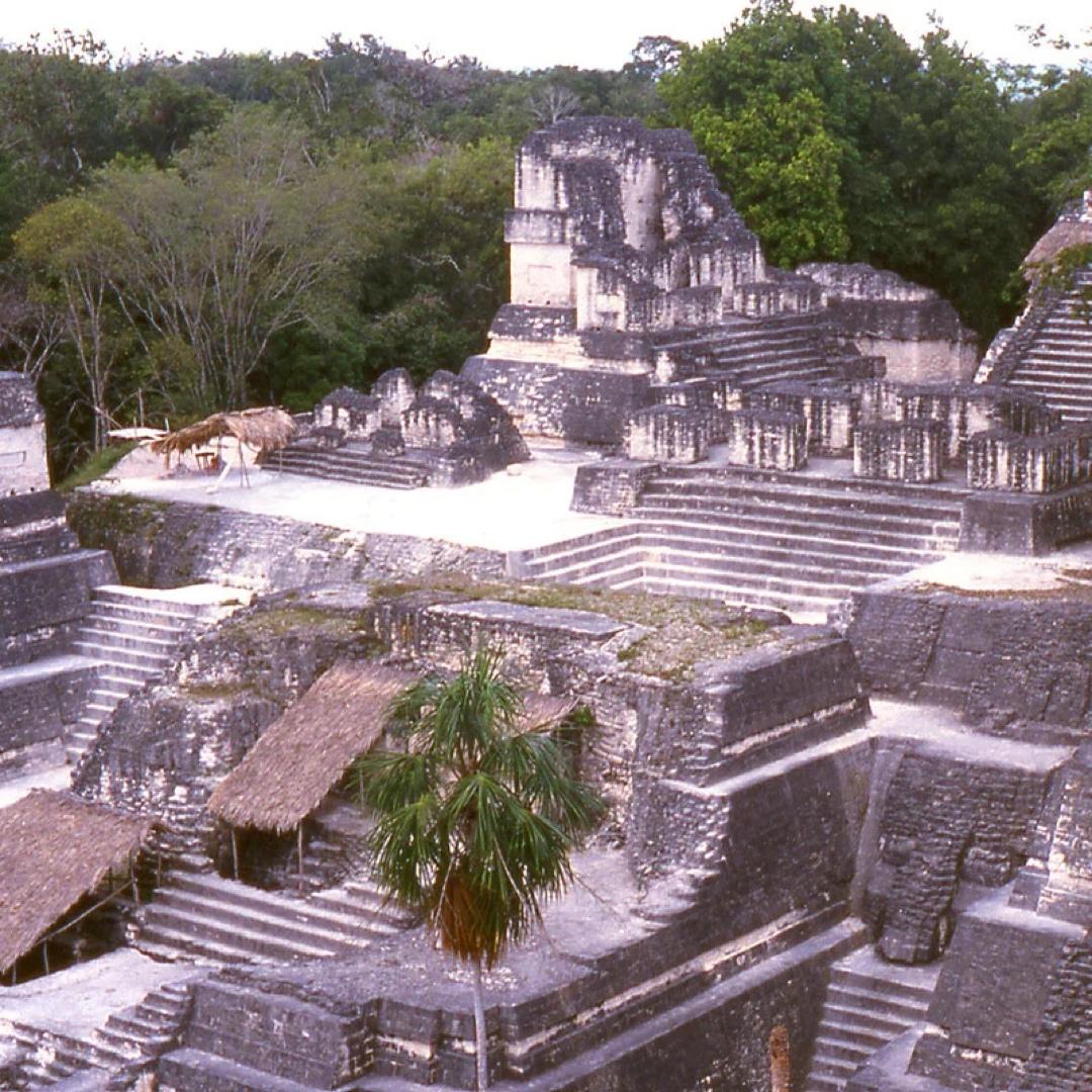 Древние майя отравили ртутью целый мегаполис