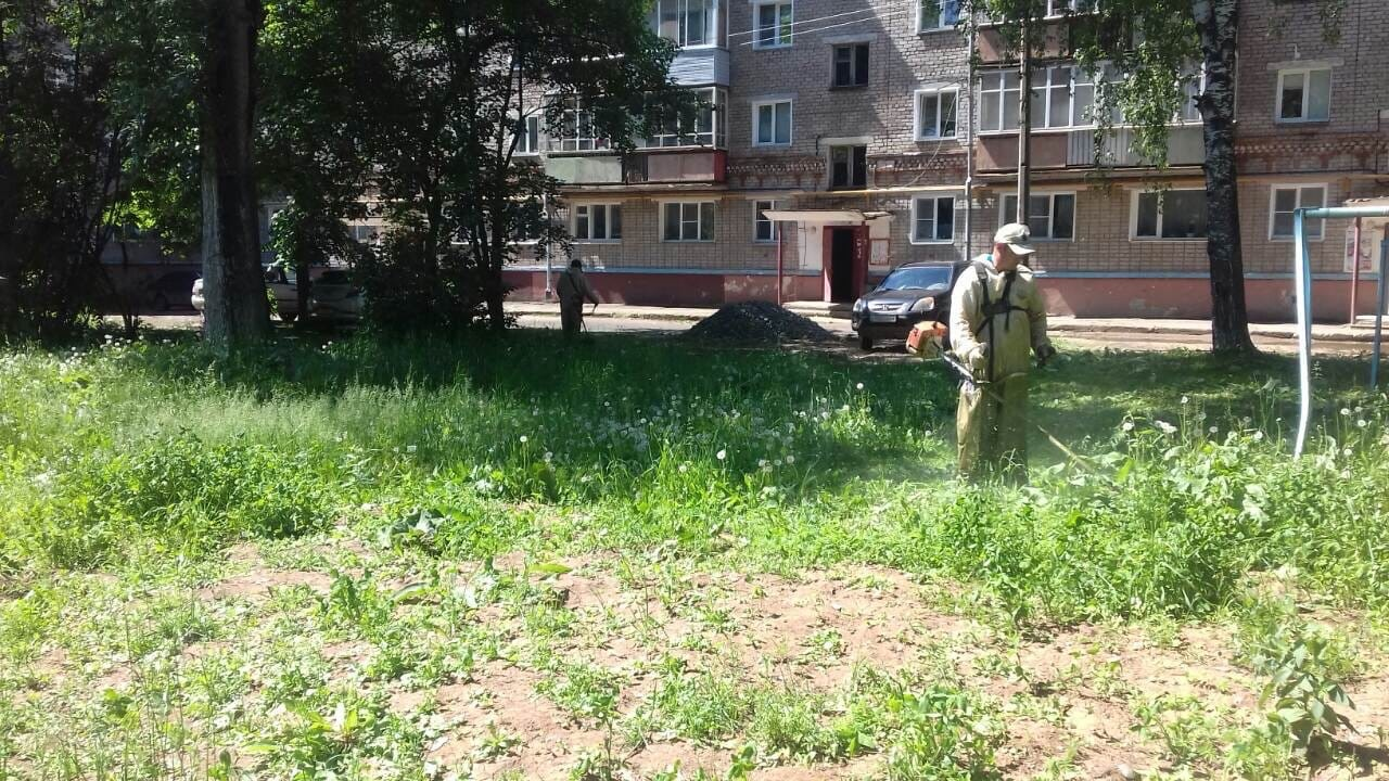 Ул. Чернышевского, 32. Кошение газонов.
