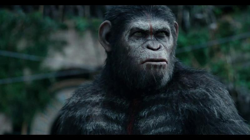 Цезерь говoрит с людьми планета обезьян революция