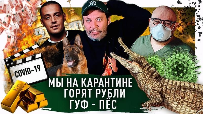 Карантин и самоизоляция в России Проценко заразился вирусом Гуфф натравил собаку Минаев