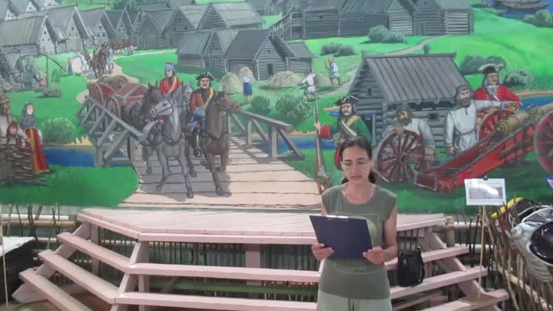 Библиотекарь и гости Дубровской сельской библиотеки поздравляют с Днем города сольчан