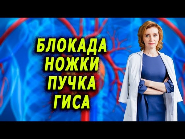 Блокада ножки пучка гиса Кардиолог Анна Кореневич
