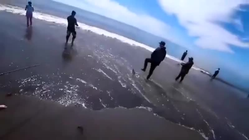 Отлично отдохнули и порыбалили всей семьёй на берегу охотского моря!