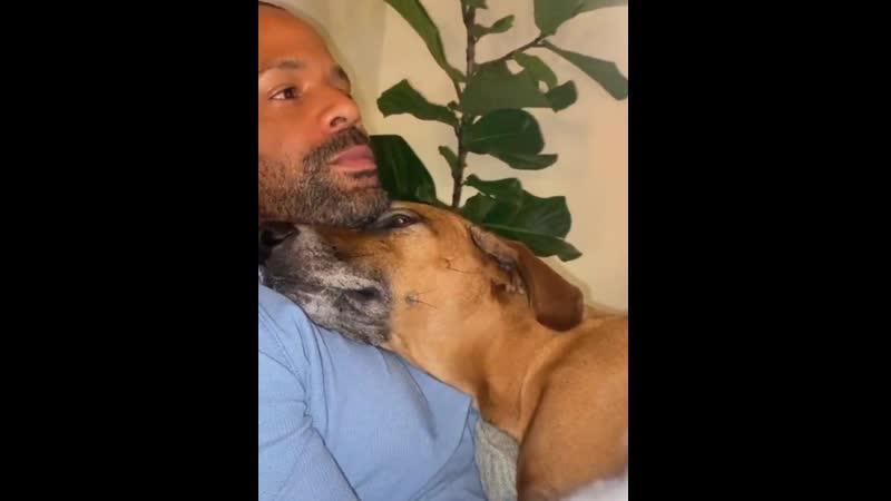 Любовь животных бесценна