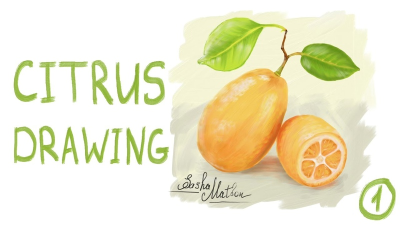 IPad Air 3 2019 Citrus Drawing. It is not iPad Pro but the best iPad for Drawing in 2020