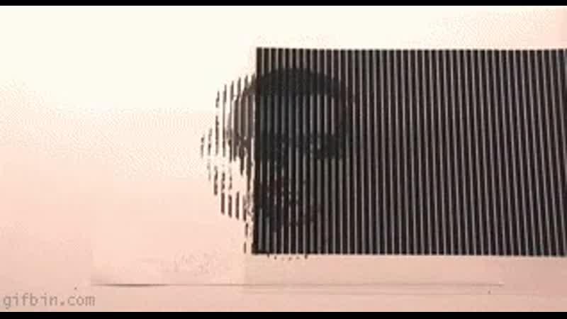 Optical illusion - rotating head