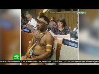 посол новой гвинеи в оон фото веерная пальма активно