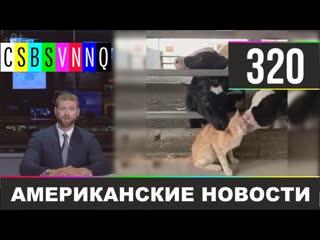 CSBSVNNQ - Американские новости #320 Выпуск от