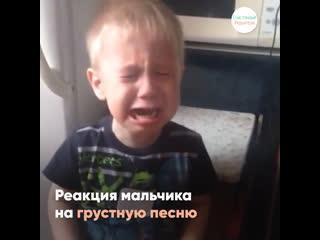 Расплакался из-за грустной песни