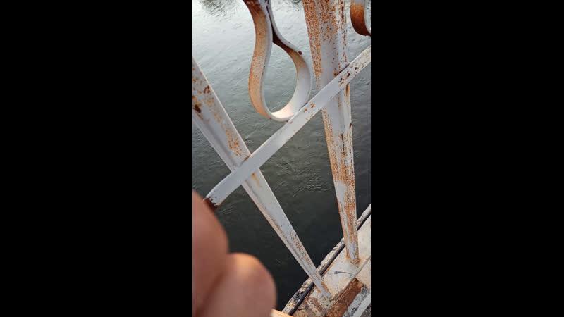 Прыгаю с моста 🔥