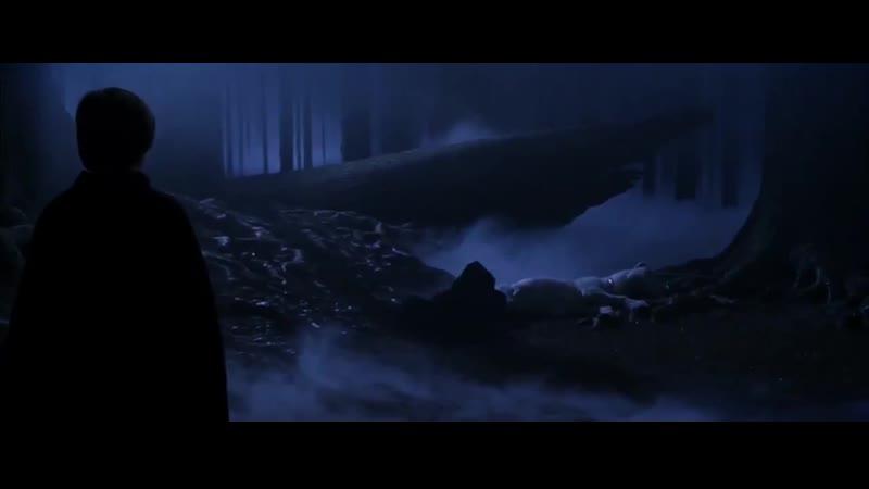 Если бы у персонажей Гарри Поттера было огнестрельное оружие Монтажёры Оскар не теряли