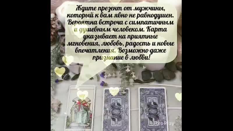 VID_91700806_054702_780.mp4
