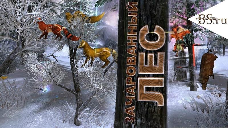 Зачарованный лес   BS.ru