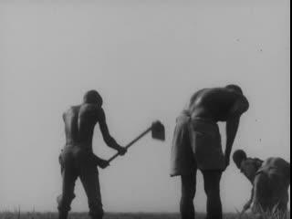 At Least Let Me Climb The Palm Trees / Deixem-me ao Menos Subir s Palmeiras (Portugal, 1974) dir. Lopes Barbosa