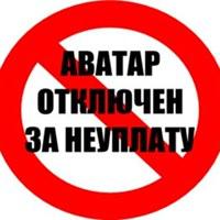 Личная фотография Елизаветы Андреевой ВКонтакте