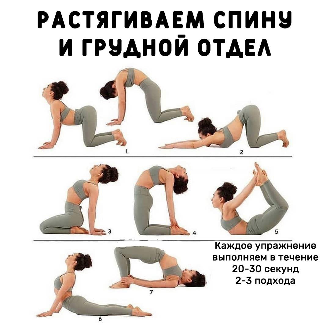 Немного растяжки для спины, поясницы и грудного отдела