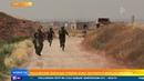 Сирийские боевики нарушают режим прекращения огня