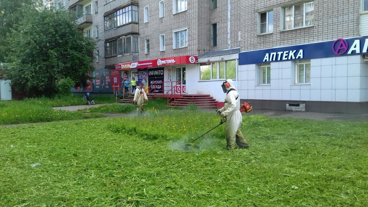 Ул. Лепсе 58 корпус 2. Кошение газонов.