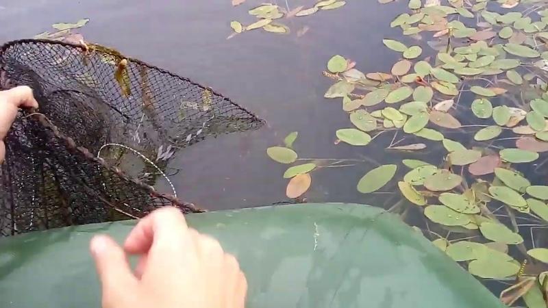 Рыбалка вне закона Непростые Простые хитрости