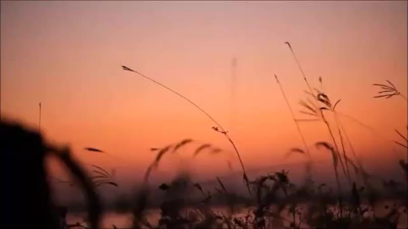 Cabir Novruz - Sən elə bir vaxtda rast gəldin mənə (Ləman Nurun ifasında) ( 360 X 360 ).mp4