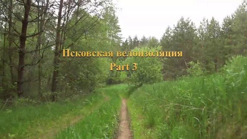03.06.2020 Псковская велоизоляция part 3