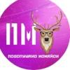 Подслушано Можайск