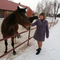 Фотография профиля Елены Самариной ВКонтакте