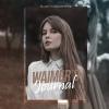 Waimer's Journal