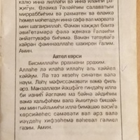 Flyura  Ibragimova