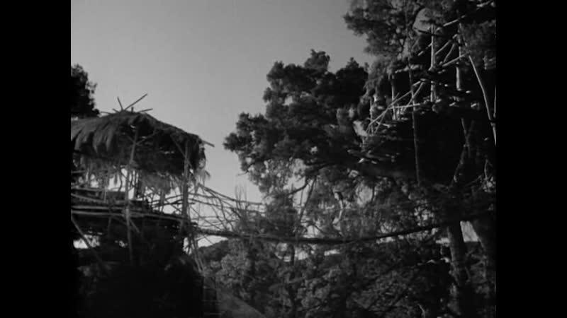 СПАСЕНИЕ ТАРЗАНА 1936 боевик приключения Ричард Торп Джон Фэрроу Джеймс С МакКэй 1080p