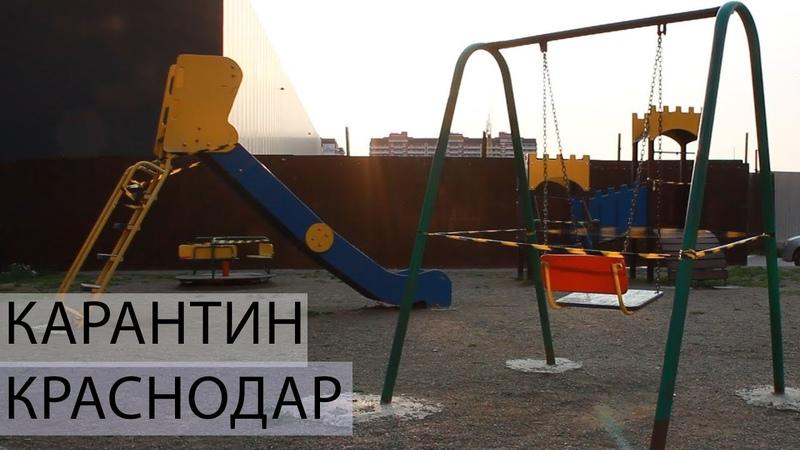 Карантин в Краснодаре 1 апреля Метальникова