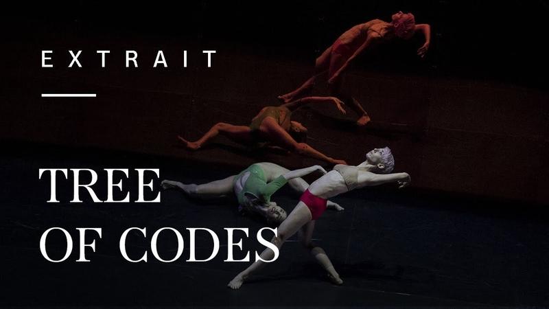 Tree of Codes by Wayne McGregor