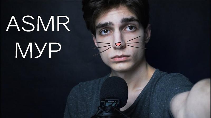 АСМР МУРЧАНИЕ😻 и визуальные триггеры для сна 🎧 ASMR Cat Purring and visual triggers