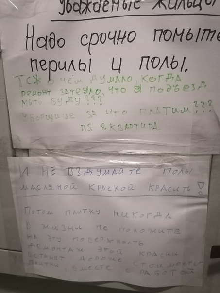ЯНТАРНЫЙ ДЛБ [Калининград]