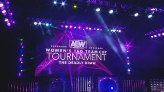 AEW Women's Tag Team Cup Tournament: The Deadly Draw Night 1 Quarter Finals | 8/3/20