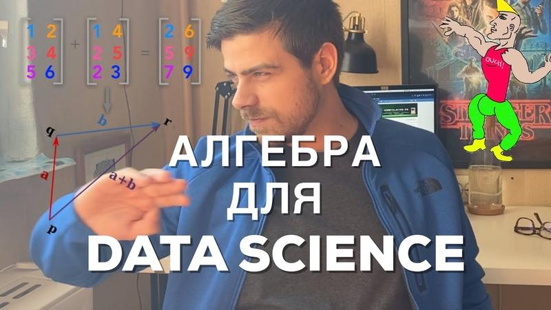 Линейная алгебра для гуманитариев Data Science